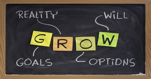 The GROW Model Part 1  Goal Setting